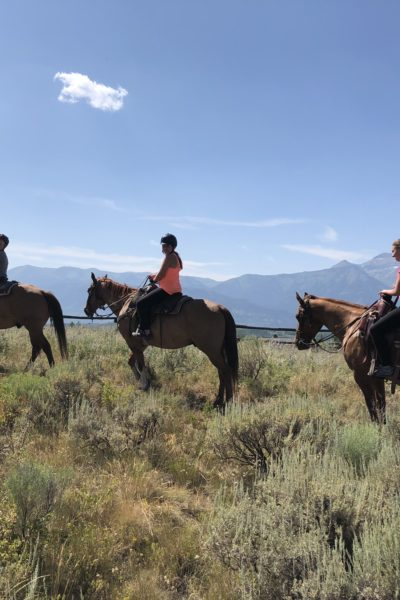Girl and Her Kitchen Travel Series: Out West Road Trip {Part Four- Grand Tetons, Jackson Hole, Custer and the Trip Home!}